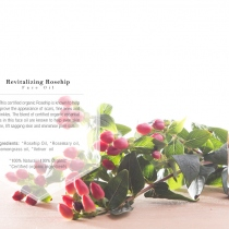 Revitalize Rosehip Face Oil at Blisby
