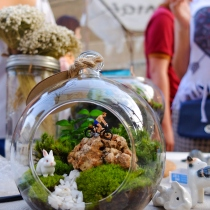 """Ball Terrarium"" at Blisby"