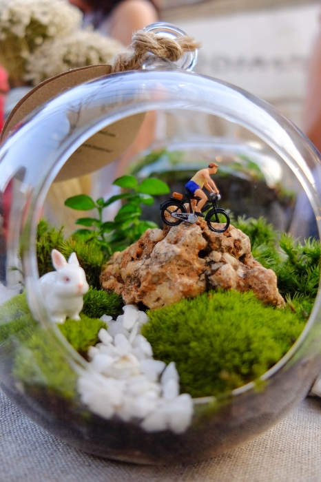 """""""Ball Terrarium"""" large image 1 by puppyleafshop"""
