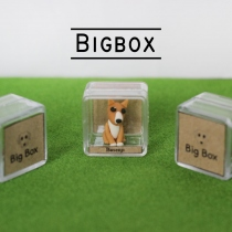 Mini Dogs บาเซนจิ at Blisby