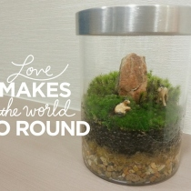 Tiny Horses : Medium Size Terrarium at Blisby