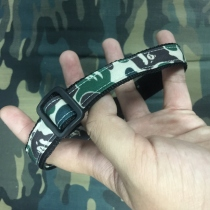 Dog collar CAMO at Blisby