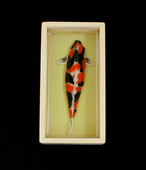 Koi pond painting large image 0 by Piccolo