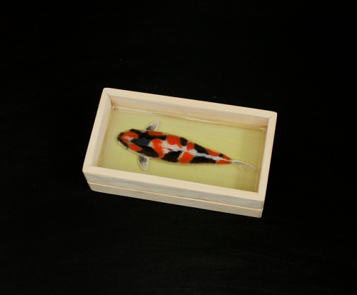 Koi pond painting large image 4 by Piccolo