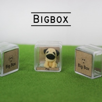 Mini Dogs ปั๊ก at Blisby