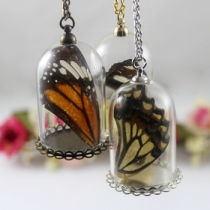 Real Butterfly Wing Necklace at Blisby