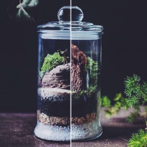 สวนขวด terrarium at Blisby