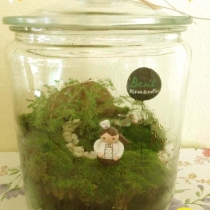 """Basil Steak"" Terrarium at Blisby"