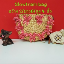 Slow train Bag at Blisby