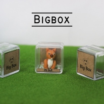 Mini Dogs พิทบูล at Blisby
