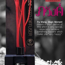 """Pa-wang""  Homemade Reed Diffuser 