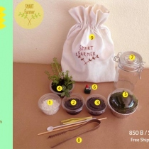 Terrarium KIT at Blisby