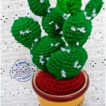 PRICKLY PEAR CACTUS (OPUNTIA) cactus crochete  at Blisby