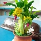 กล้วย banana tree thumbnail 0 by FlowerClay