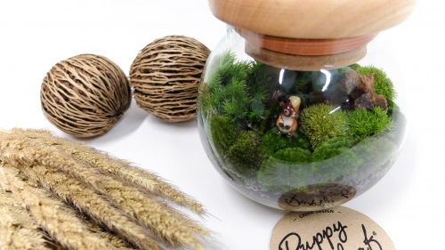 """sphere moss"" large image 1 by puppyleafshop"