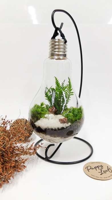"""Light bulb plant""  large image 0 by puppyleafshop"