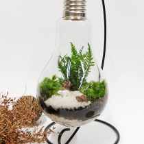 """Light bulb plant""  at Blisby"
