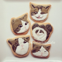 Kitten Icing Cookies at Blisby