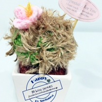 middle cactus crochet 003 at Blisby