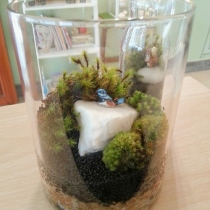 Blue Bird : Medium Size Terrarium at Blisby