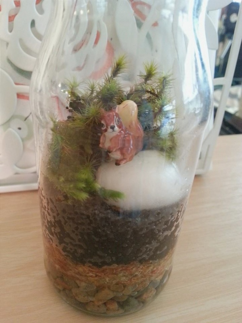Fluffy Squirrel : Small Size Terrarium large image 0 by TinyGarden