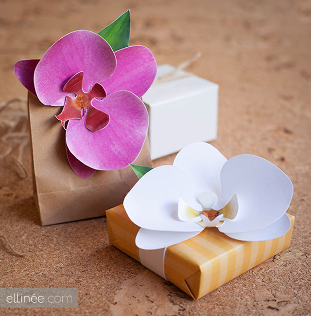 paper orchid Make simple paper orchids to add a special touch to gifts for this diy craft you will need: desktop printer scissors styrofoam craft sheets hole punch.